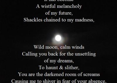 A Wistful Melancholy - Fidel Hogan Walsh