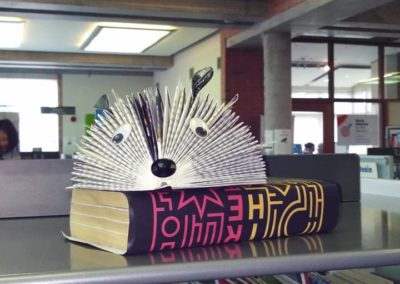 Book art at Johnston Library, Cavan for Cavan Arts Festival